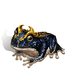 Faineant Frog II